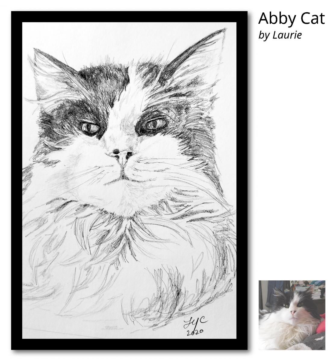 Abby-Cat-Portrait_post