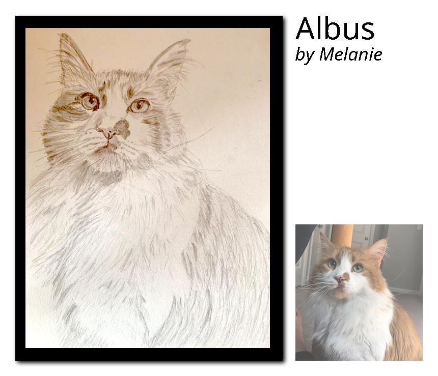 Albus-Portrait_post