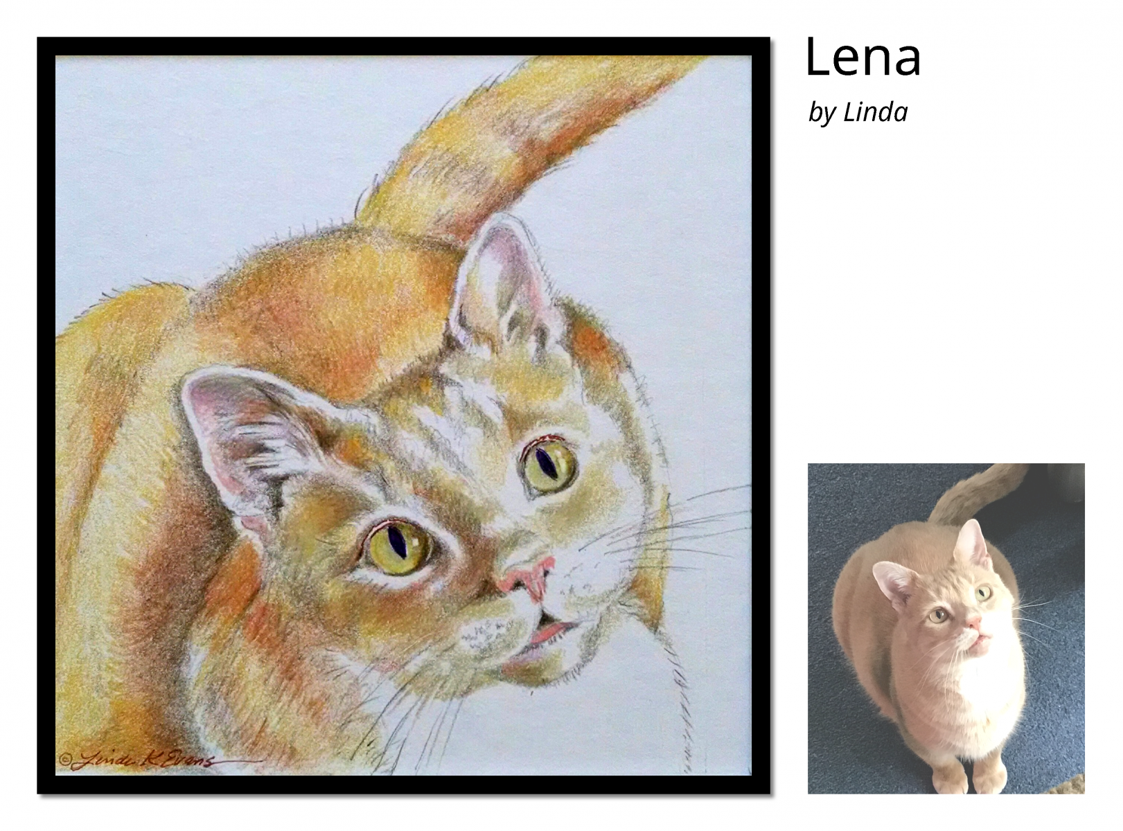 Lena-crop