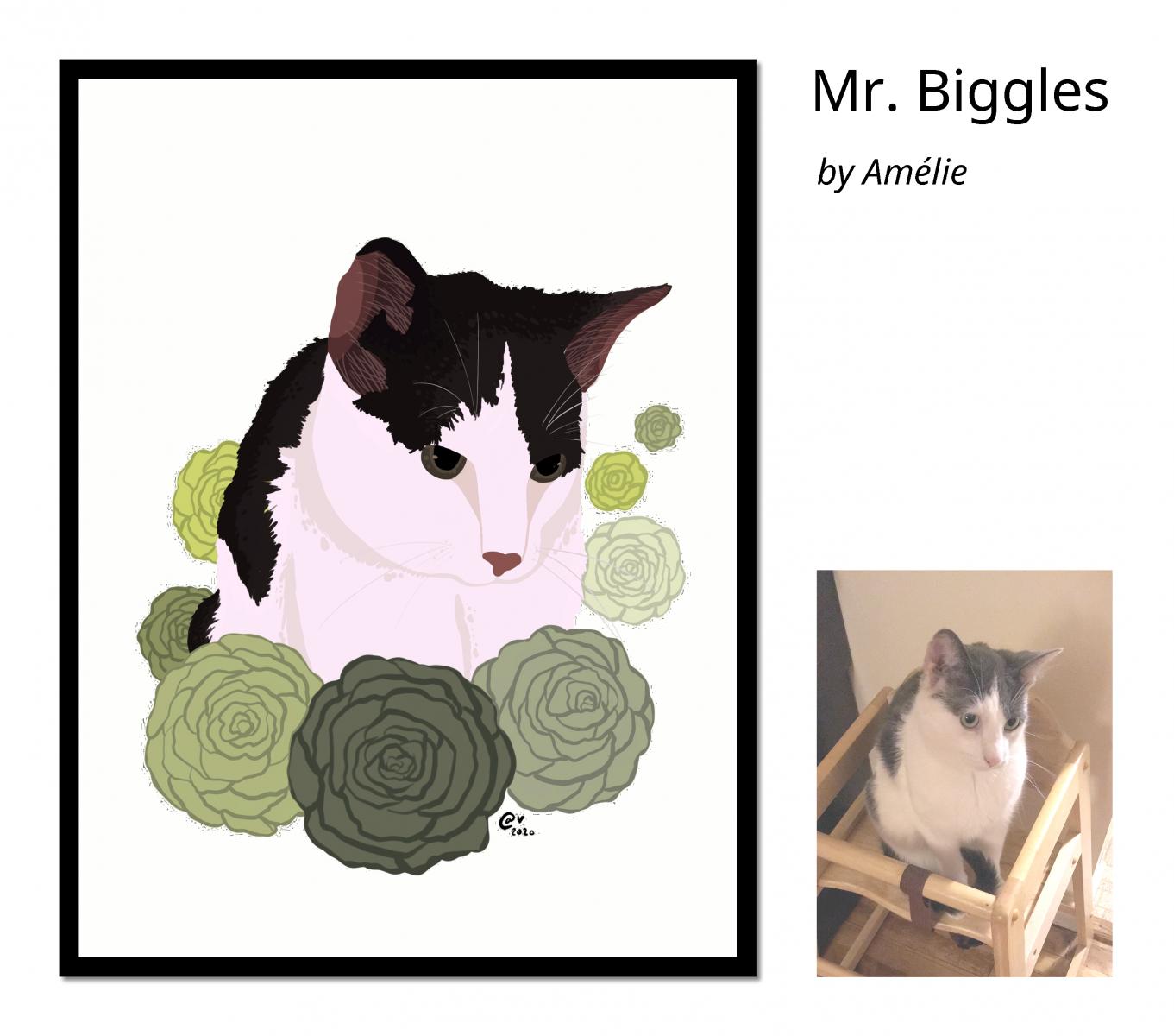 Mr._Biggles