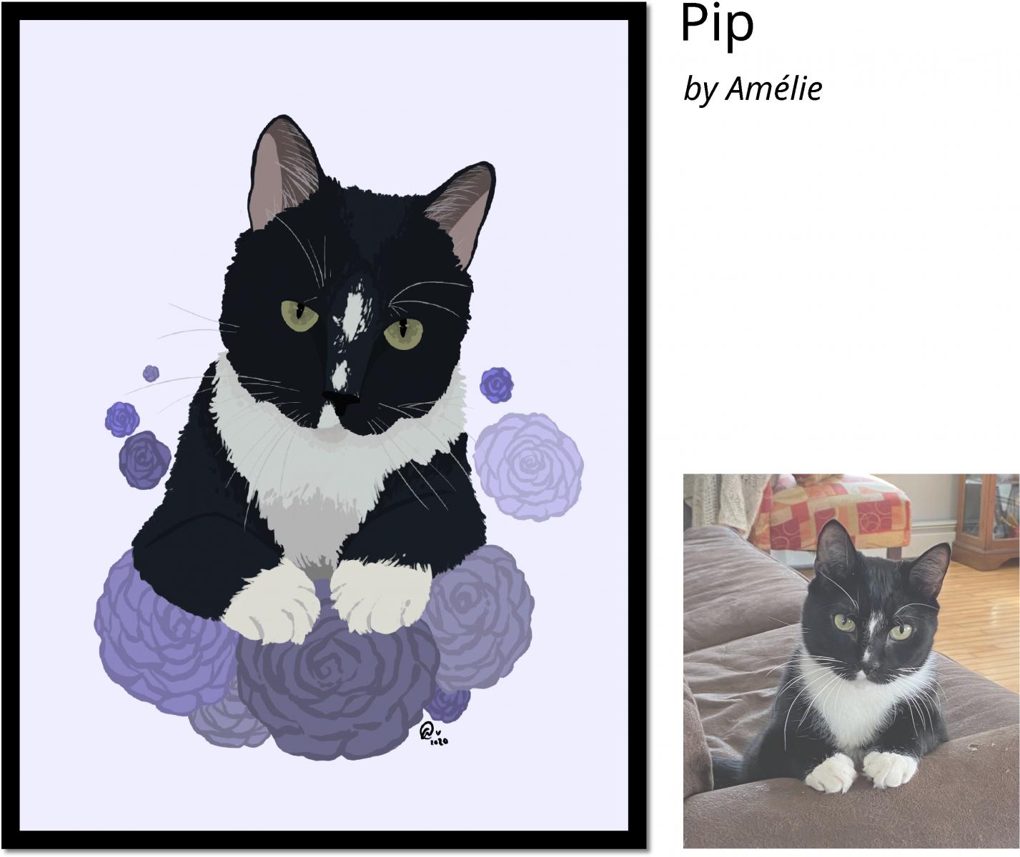 Pip-crop