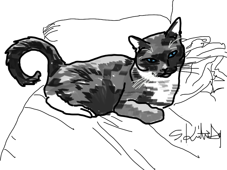 Drawing of Tippy by S. Kirsten Gay